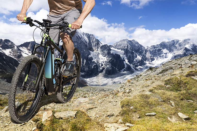 Mountain eBike Picture